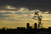 秋の日のシルエット - It's only photo 2