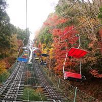高尾山 - 赤坂・ニューオータニのヘアサロン大野ザメイン店ブログ