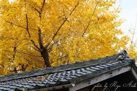 町を歩く - Ryu Aida's Photo