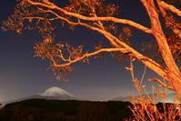 30年11月の富士(30)小山町竹之下の富士 - 富士への散歩道 ~撮影記~