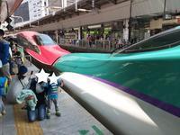 内装がポップな北海道新幹線♪ - 子どもと暮らしと鉄道と