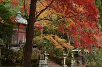 京の秋~護法堂弁天~ - 雲母(KIRA)の舟に乗って