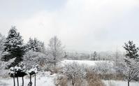 雪の季節がやって来た - 標高480mの窓からⅡ