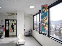古澤めぐみふくろう展のご紹介とお礼 - 大阪の絵画教室|アトリエTODAY