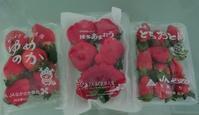 12月☆日本から届いたもの☆Vol.2 - Orchid◇girL in Singapore Ⅱ
