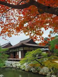 紅葉と東求堂 - 風の香に誘われて 風景のふぉと缶