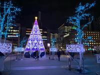 札幌ホワイトイルミネーション - 麹町行政法務事務所