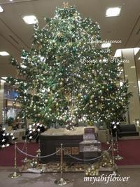 帝国ホテルのクリスマスツリー2018 - 風と花を紡いで