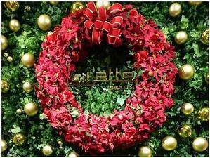 オフBLOG☆ときめきの宝石箱の休日⑧ - 札幌路面店 PINKHOUSE INGEBORG ときめきの宝石箱