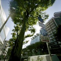 Accumulation of light -Enjoy the viewpoint- - jinsnap_2(weblog on a snap shot)