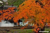 おもしれぇ~大井川!~大井川鐡道~ - 蒸気をおいかけて・・・少年のように