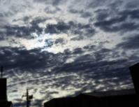 寒い朝 - のーんびり hachisu 日記