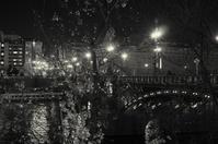 A moment in Prague #25 - S w a m p y D o g - my laidback life