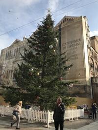 フェッラーラのクリスマスマーケット - フィレンツェのガイド なぎさの便り