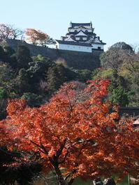 彦根城3 - とりあえず撮ってみました
