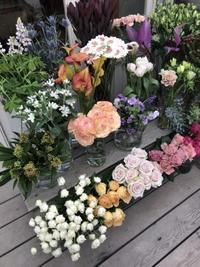 鎌倉心景「花」 - 海の古書店