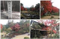 京都の紅葉 - これから見る景色