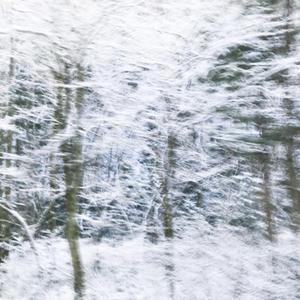 雪が降りました - 日々の皿