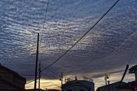 下り坂を告げる高積雲。 - ~風紋~徒然歳時記