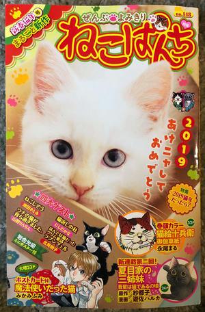 ねこぱんち「ウチの猫が育ち過ぎました。」 - ■山野りんりんの近況ブログ