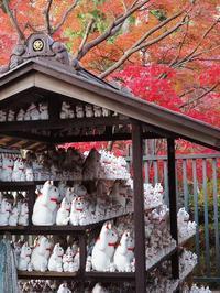 豪徳寺と言えば招き猫 - 光の音色を聞きながら Ⅳ