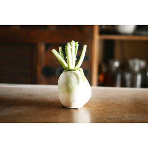冬の野菜のたのしみ。 - FU-KOなまいにち
