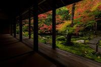 京の紅葉2018錦色の蓮華寺 - 花景色-K.W.C. PhotoBlog