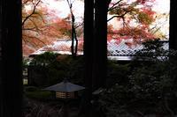 日本っていいな~ - ようこそ風の散歩へ