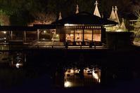 白鳥庭園のライトアップ - 尾張名所図会を巡る
