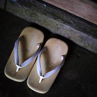 維新150年鹿児島の旅霧島神宮18.11.01 11:04 - スナップ寅さんの「日々是口実」