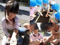 【千葉新田町園】秋のクッキング - ルーチェ保育園ブログ  ● ルーチェのこと ●