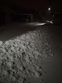12月10日今日の写真 - ainosatoブログ02