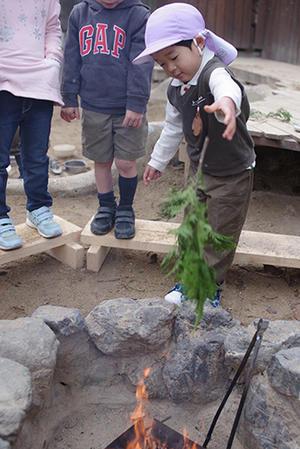ヒノキの葉。ー終ー - 陽だまりの小窓 - 菊の花幼稚園保育のようす