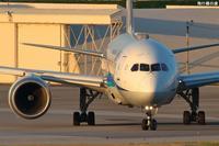 光るサングラスB787全日空(NH) - 飛行機の虜