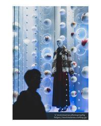 Frozen - ♉ mototaurus photography