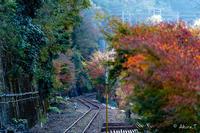 トロッコ保津峡駅 -1- - ◆Akira's Candid Photography