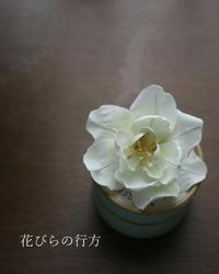 冬咲きの1輪野ばら - 布の花~花びらの行方 Ⅱ