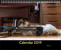 カレンダー制作 - 彩りの軌跡