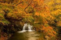 錦秋の飛鳥川 - toshi の ならはまほろば