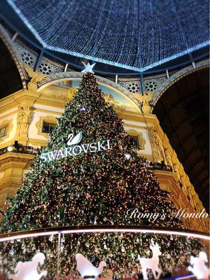 スワロのクリスマスツリー♪ - Romy's Mondo