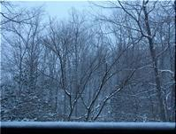 一気に、冬景色 - Que Sera *Sera