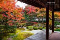 京都の秋 - *花音の調べ*