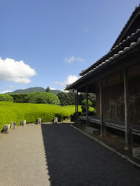 ねんきんQuiz-第533問(社会保険料控除) - 松浦貴広のねんきんブログ
