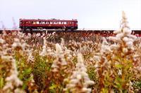 荒涼 - 今日も丹後鉄道