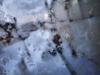 12月11日今日の写真 - ainosatoブログ02