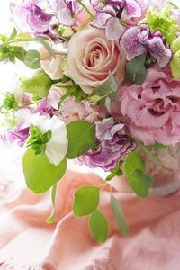 本日のレッスン撮って出し、パンジー出ました!! - お花に囲まれて