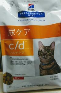 猫が猫を被る - 素人木工雑貨と犬猫日記