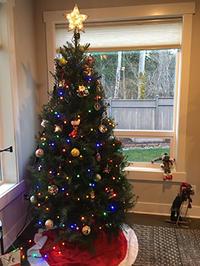 クリスマスまでのカウントダウン、、、2週間前だけど3家族でクリパ♪ - くもりのち雨、ときど~き晴れ Seattle Life 3