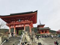 2018年11月 京都: 紅葉🍁が一番ステキな京都(^。^) - Choco  Chip  Mint
