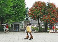 上野のお山と2人のおばあちゃんの話 - あの町 この道